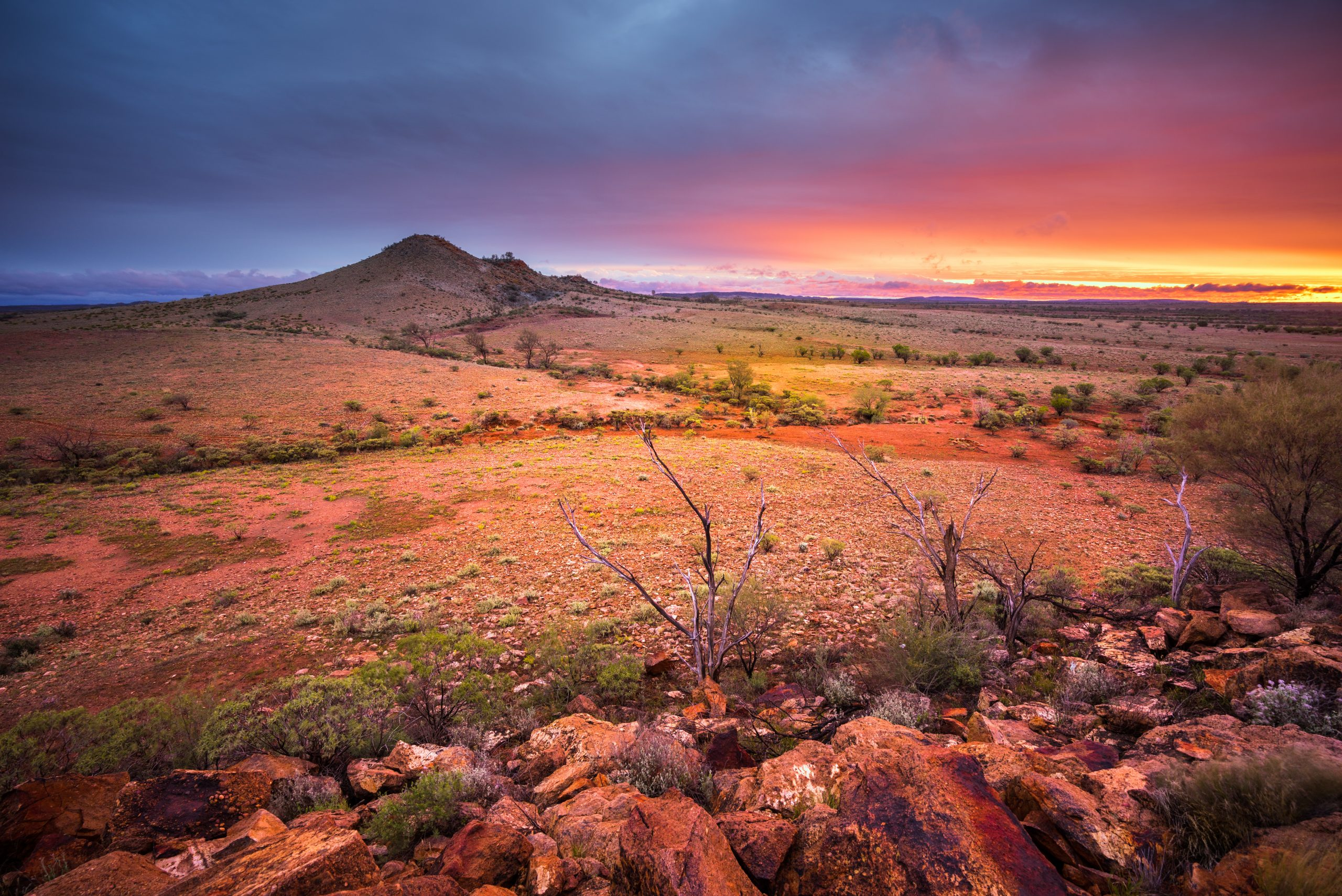 Reporting Back; The Northern Territory Intervention One Year On